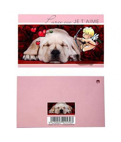 Carte de vœux animaux (10 pièces)