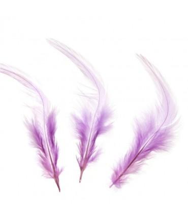 Plume d'autruche colorée (20 pièces) - Parme
