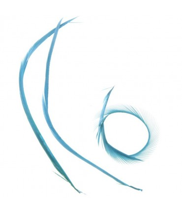 Plumes pour bijoux colorée (20 pièces) - Turquoise